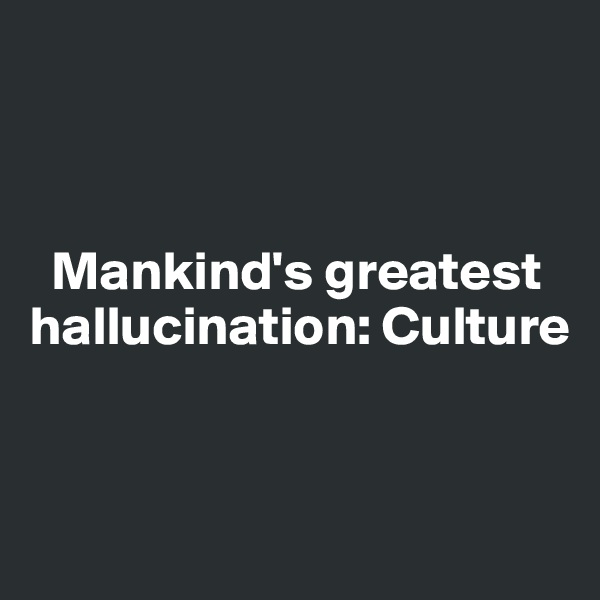 Mankind's greatest hallucination: Culture