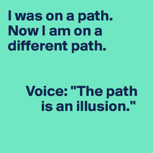"I was on a path. Now I am on a different path.         Voice: ""The path             is an illusion."""