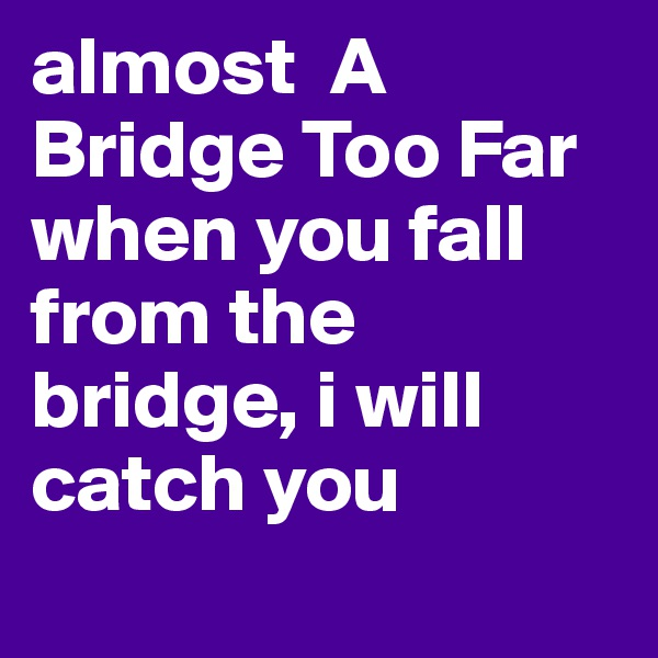 almost  A Bridge Too Far when you fall from the bridge, i will catch you