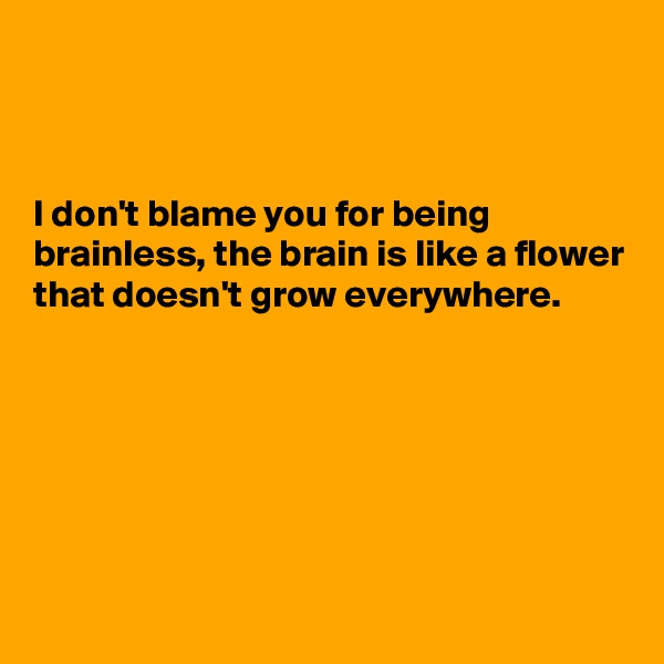 I don't blame you for being brainless, the brain is like a flower that doesn't grow everywhere.