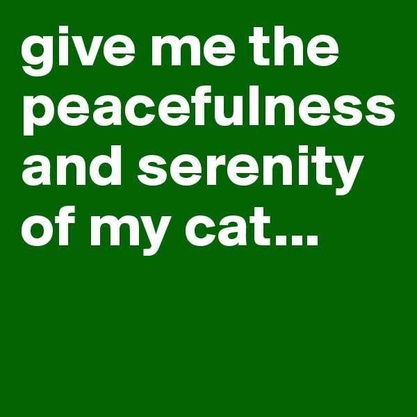 give me the peacefulness and serenity of my cat...