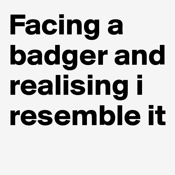 Facing a badger and realising i resemble it