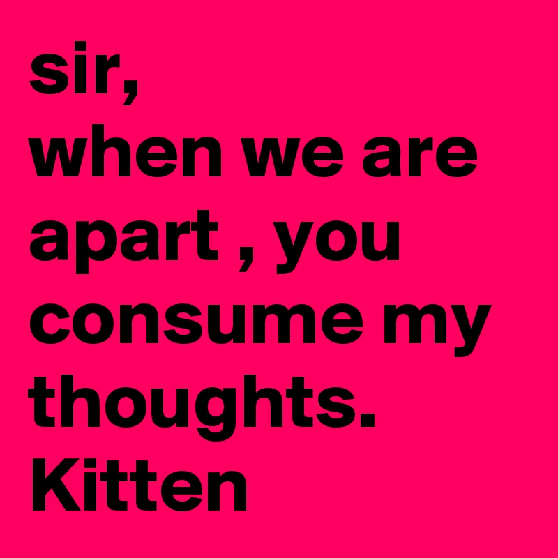 sir, when we are apart , you consume my thoughts. Kitten