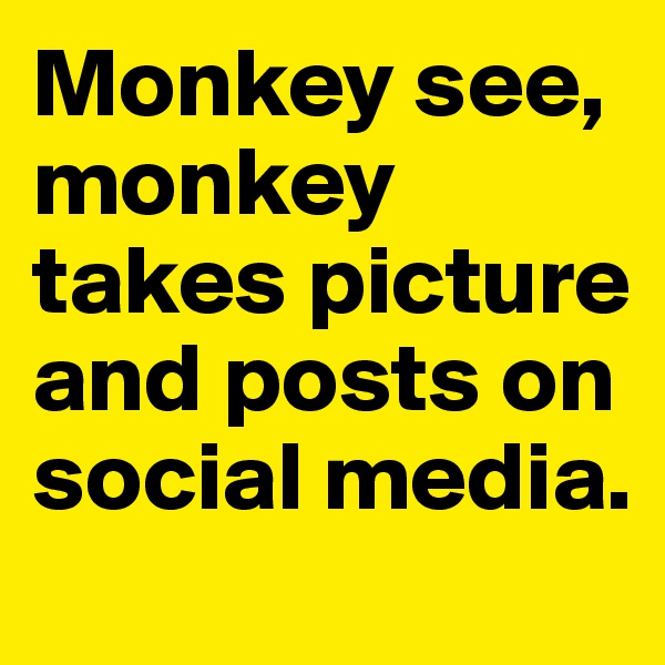 Monkey see, monkey takes picture and posts on social media.