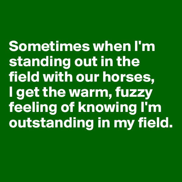 Sometimes when I'm standing out in the field with our horses, I get the warm, fuzzy feeling of knowing I'm outstanding in my field.