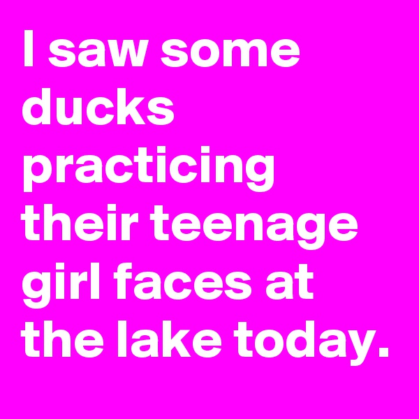 I saw some ducks practicing their teenage girl faces at the lake today.