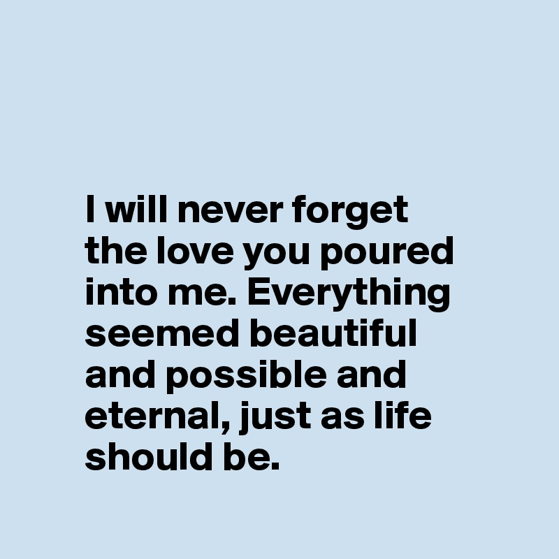 I Will Never Forget The Love You Poured Into Me Everything Seemed