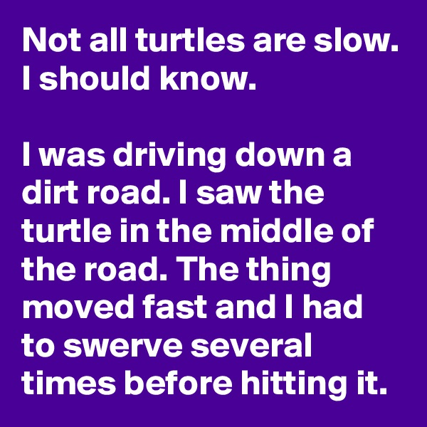 Not all turtles are slow. I should know.  I was driving down a dirt road. I saw the turtle in the middle of the road. The thing moved fast and I had to swerve several times before hitting it.