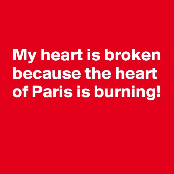 My heart is broken  because the heart  of Paris is burning!