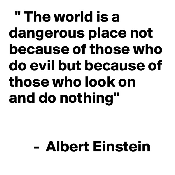 """"""" The world is a dangerous place not because of those who do evil but because of those who look on and do nothing""""           -  Albert Einstein"""