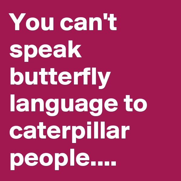 You can't speak butterfly language to caterpillar people....