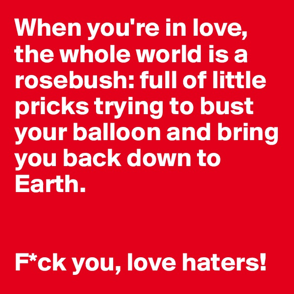 When you're in love, the whole world is a rosebush: full of little pricks trying to bust your balloon and bring you back down to Earth.   F*ck you, love haters!