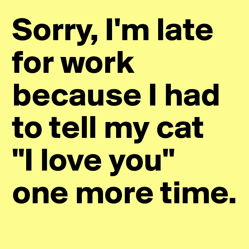 """Sorry, I'm late for work because I had to tell my cat  """"I love you"""" one more time."""