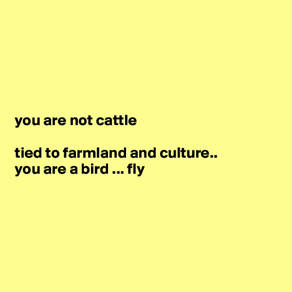 you are not cattle  tied to farmland and culture.. you are a bird ... fly
