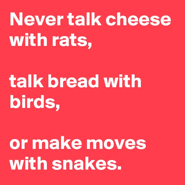 Never talk cheese with rats,  talk bread with birds,  or make moves with snakes.