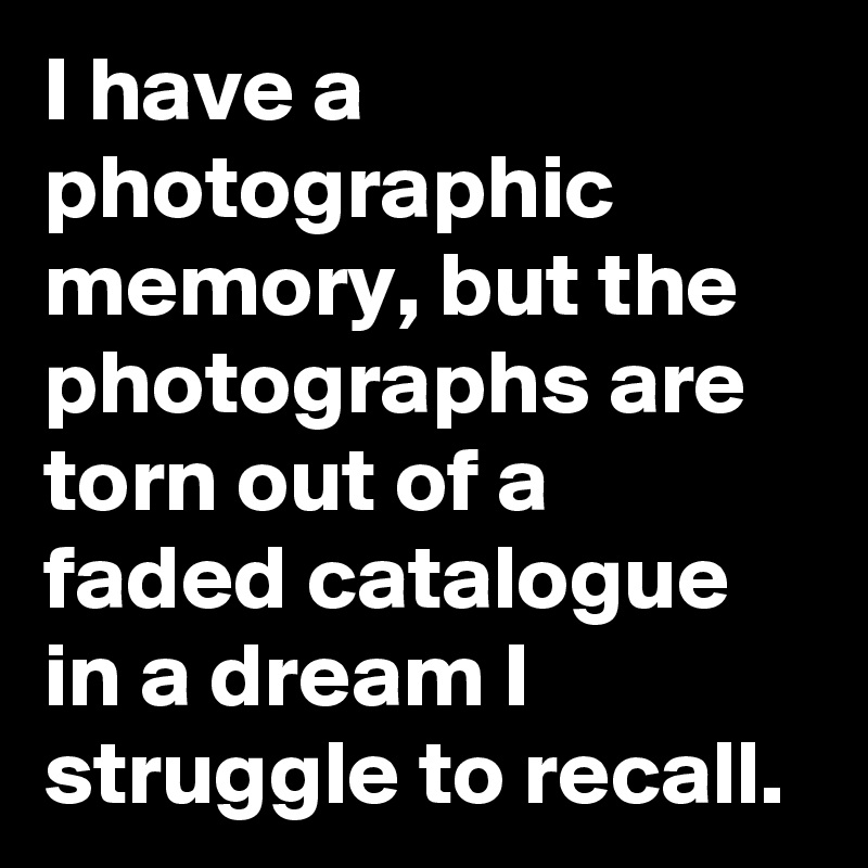 I have a photographic memory, but the photographs are torn out of a faded catalogue in a dream I struggle to recall.