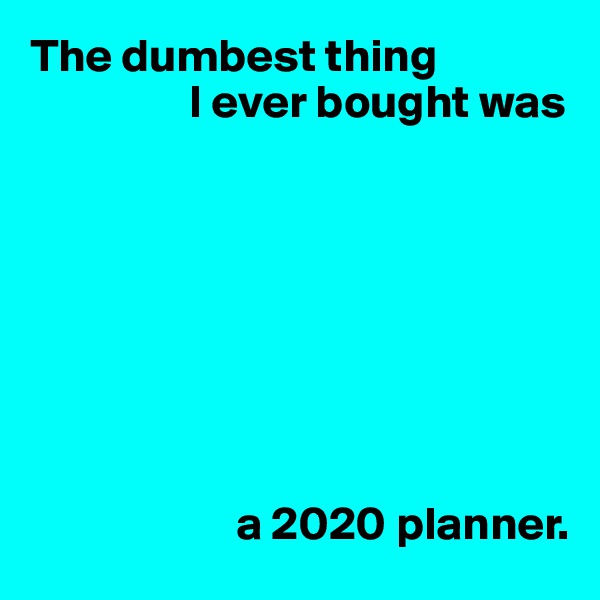 The dumbest thing                  I ever bought was                               a 2020 planner.