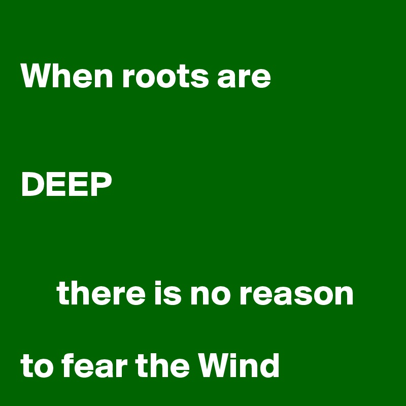When roots are    DEEP        there is no reason  to fear the Wind