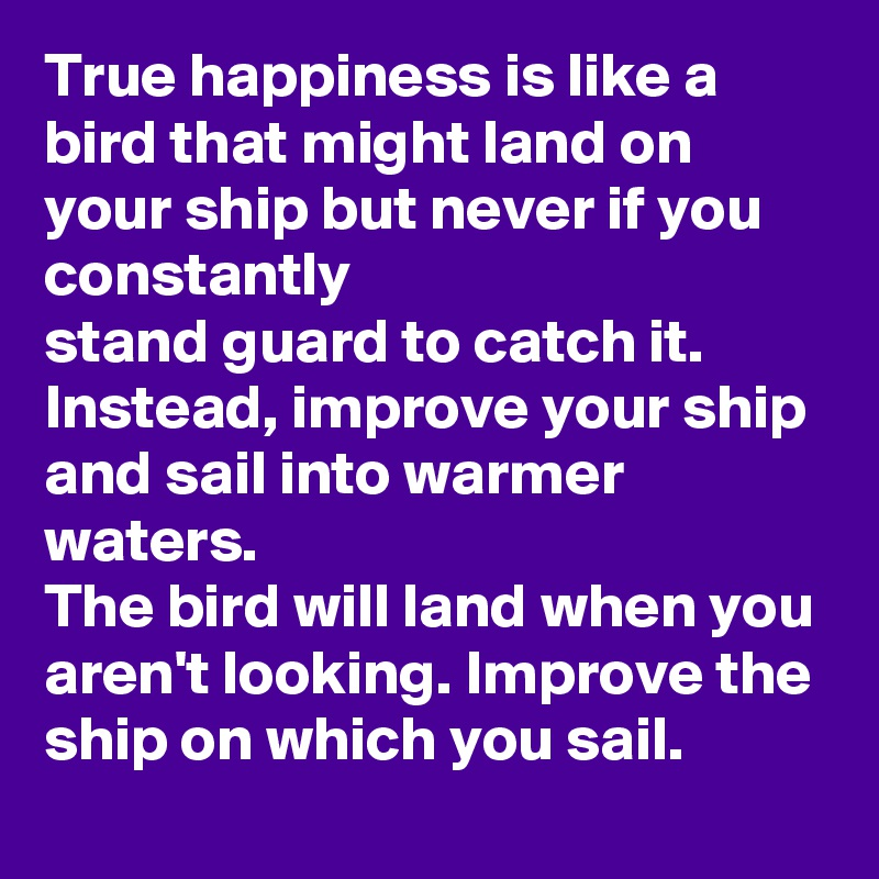 True happiness is like a bird that might land on your ship but never if you constantly  stand guard to catch it. Instead, improve your ship and sail into warmer waters. The bird will land when you aren't looking. Improve the ship on which you sail.
