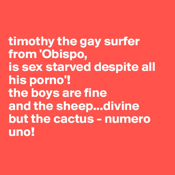 timothy the gay surfer from 'Obispo, is sex starved despite all his porno'! the boys are fine and the sheep...divine but the cactus - numero uno!