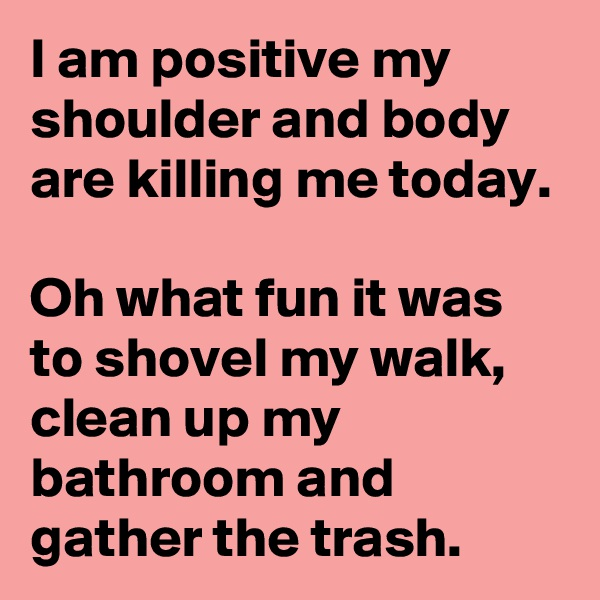 I am positive my shoulder and body are killing me today.  Oh what fun it was to shovel my walk, clean up my bathroom and gather the trash.