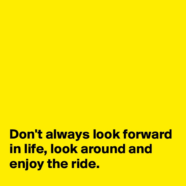 Don't always look forward in life, look around and enjoy the ride.