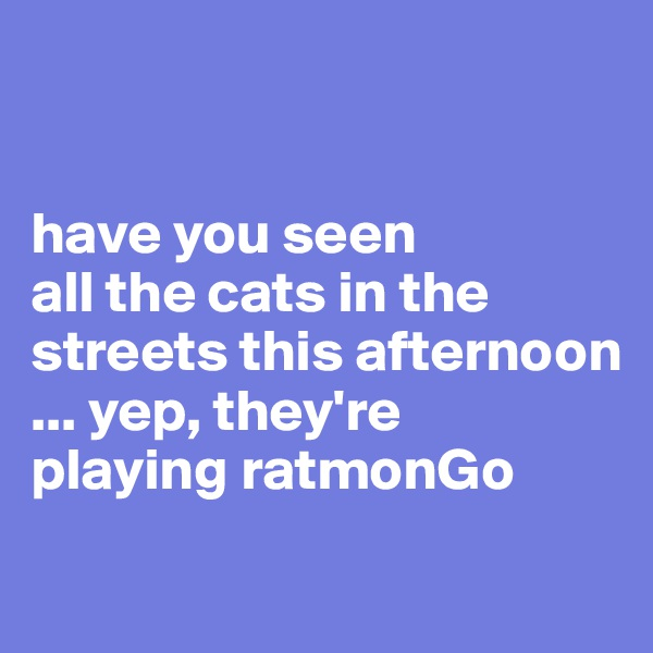 have you seen  all the cats in the  streets this afternoon  ... yep, they're  playing ratmonGo