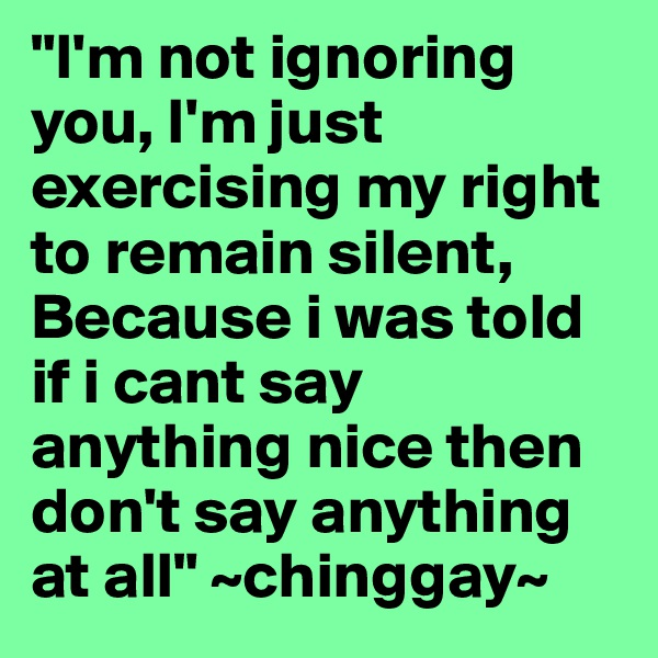 """""""I'm not ignoring you, I'm just exercising my right to remain silent, Because i was told if i cant say anything nice then don't say anything at all"""" ~chinggay~"""