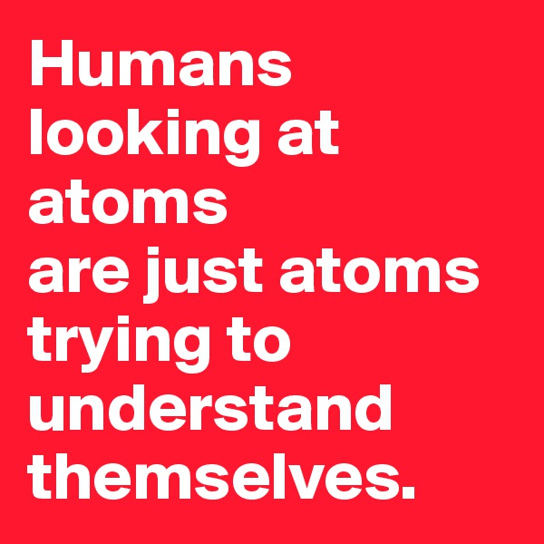 Humans looking at atoms  are just atoms trying to understand themselves.