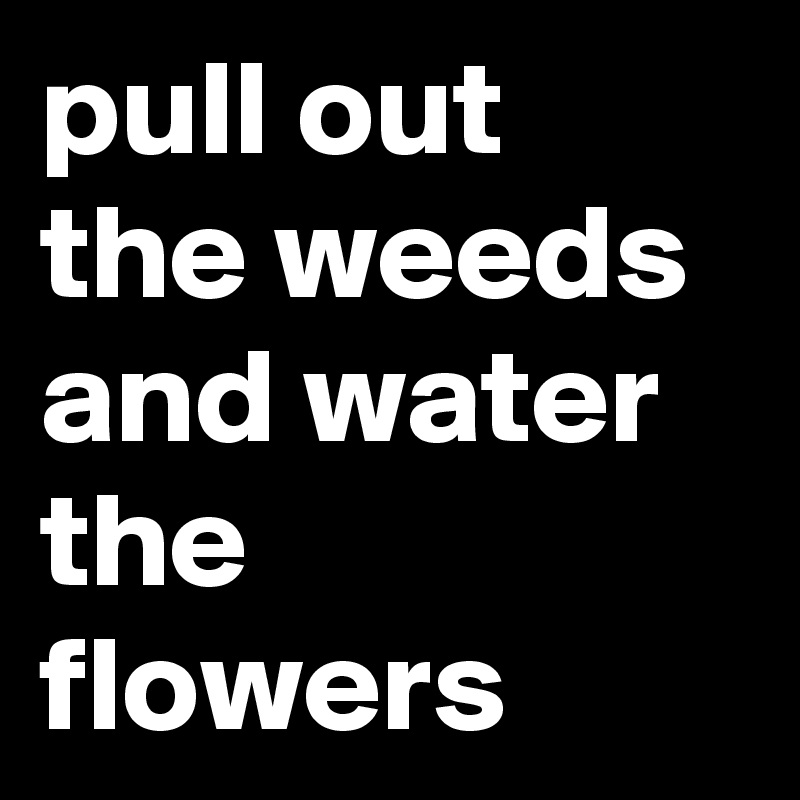 pull out the weeds and water the flowers