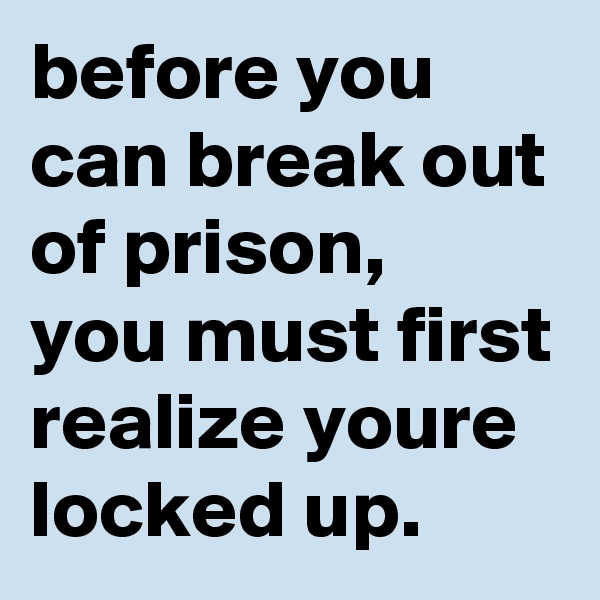 before you can break out of prison, you must first realize youre locked up.
