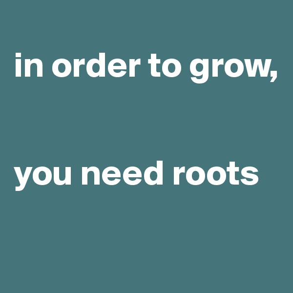 in order to grow,   you need roots
