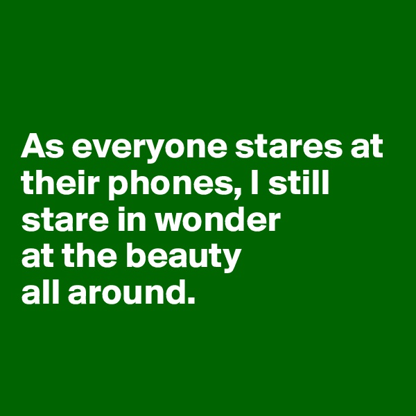 As everyone stares at their phones, I still stare in wonder at the beauty  all around.