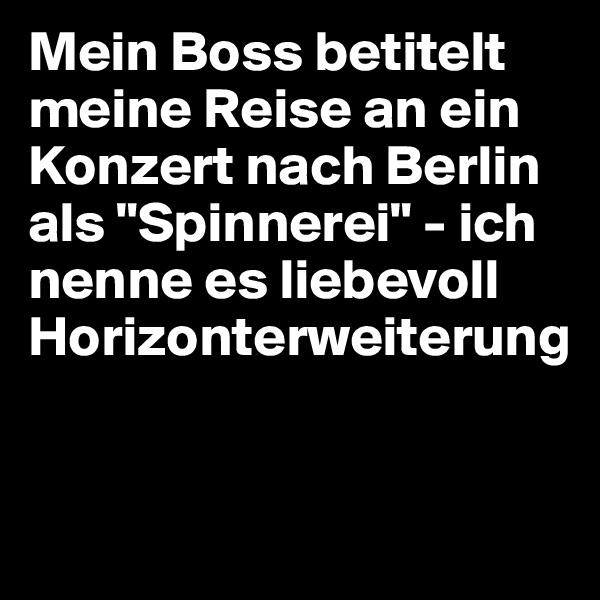 """Mein Boss betitelt meine Reise an ein Konzert nach Berlin als """"Spinnerei"""" - ich nenne es liebevoll Horizonterweiterung"""