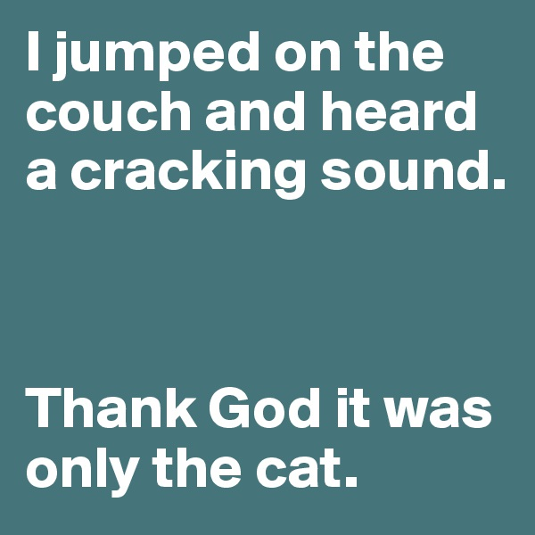 I jumped on the couch and heard a cracking sound.    Thank God it was only the cat.