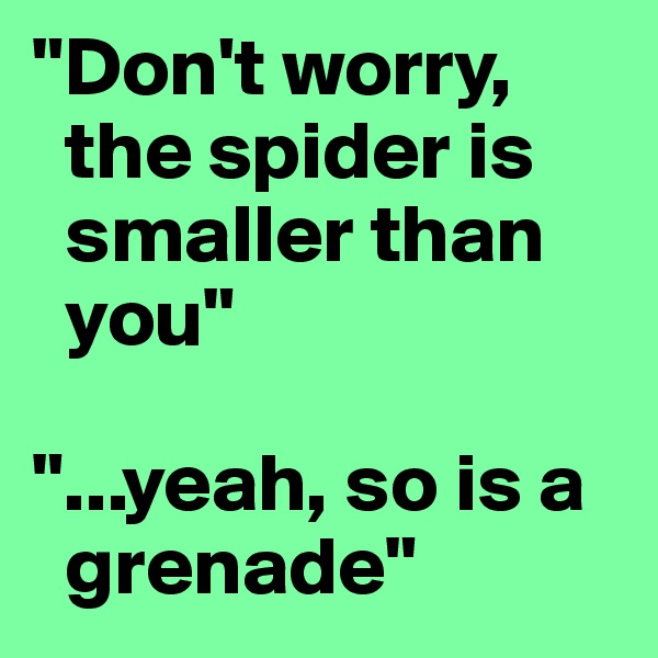 """""""Don't worry,   the spider is   smaller than   you""""  """"...yeah, so is a   grenade"""""""