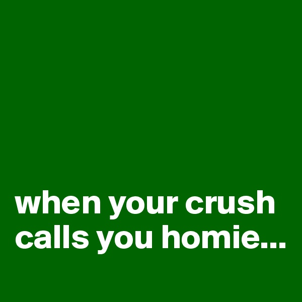 when your crush calls you homie...