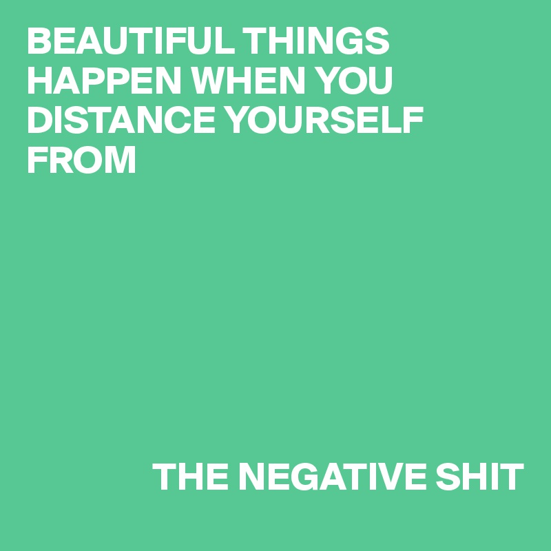 BEAUTIFUL THINGS HAPPEN WHEN YOU DISTANCE YOURSELF FROM                        THE NEGATIVE SHIT