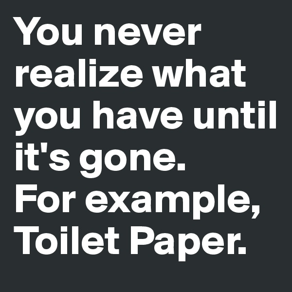 You never realize what you have until it's gone.  For example, Toilet Paper.