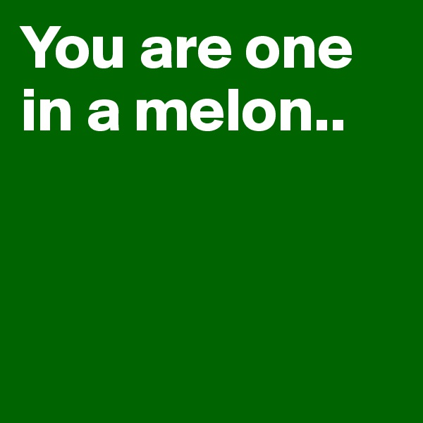 You are one in a melon..