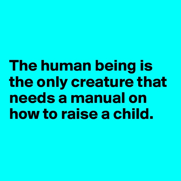 The human being is the only creature that needs a manual on how to raise a child.