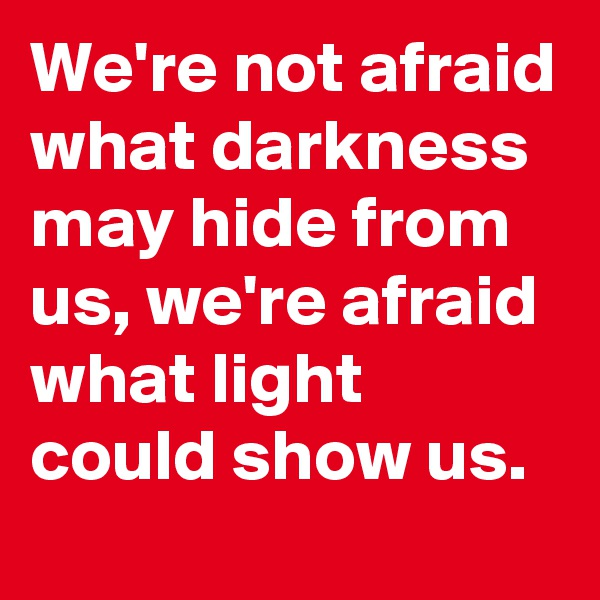 We're not afraid what darkness may hide from us, we're afraid what light could show us.
