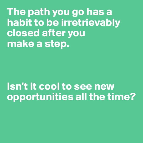 The path you go has a habit to be irretrievably closed after you  make a step.    Isn't it cool to see new opportunities all the time?