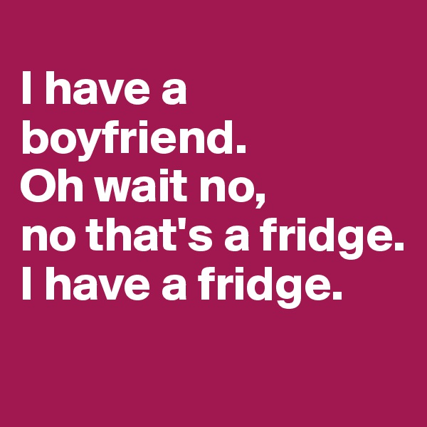 I have a boyfriend.  Oh wait no, no that's a fridge.  I have a fridge.