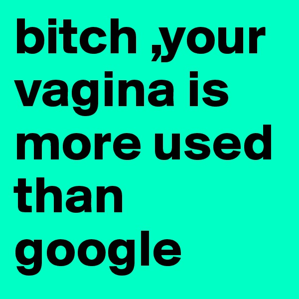 bitch ,your vagina is more used than google
