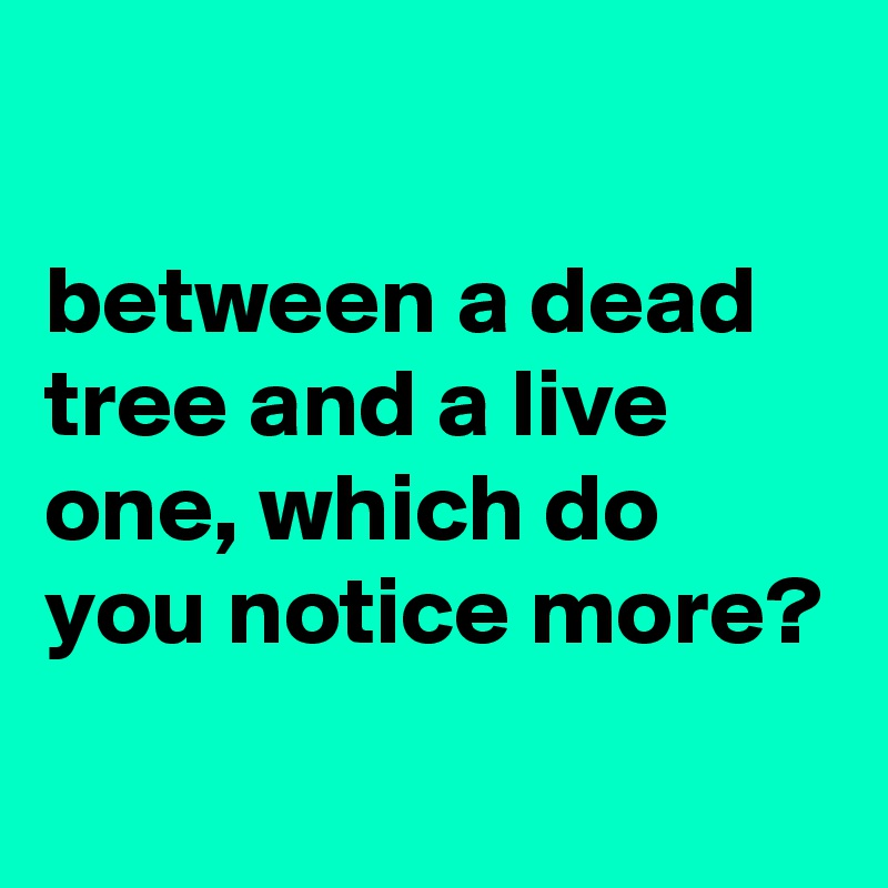 between a dead tree and a live one, which do you notice more?