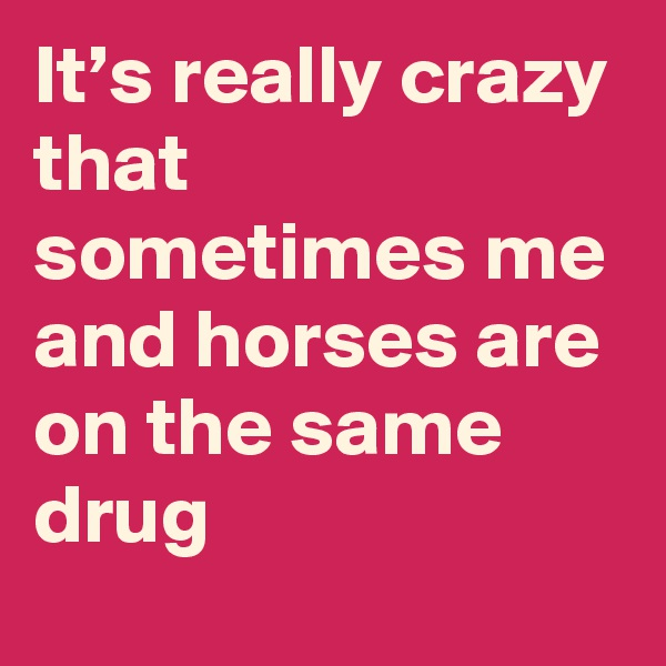 It's really crazy that sometimes me and horses are on the same drug