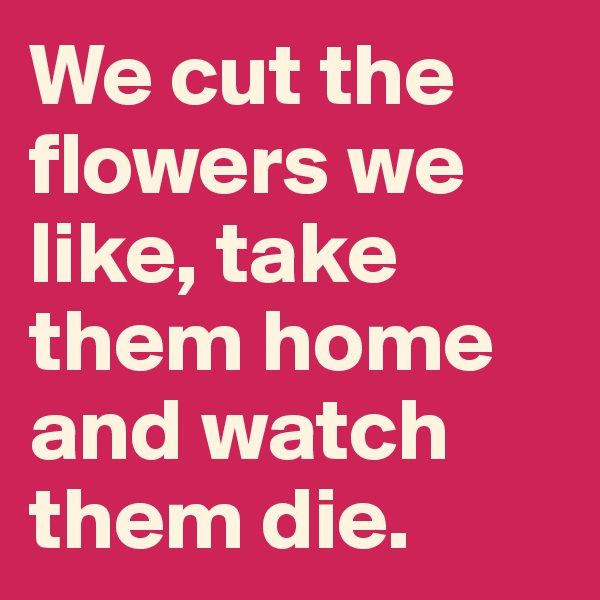 We cut the flowers we like, take them home and watch them die.
