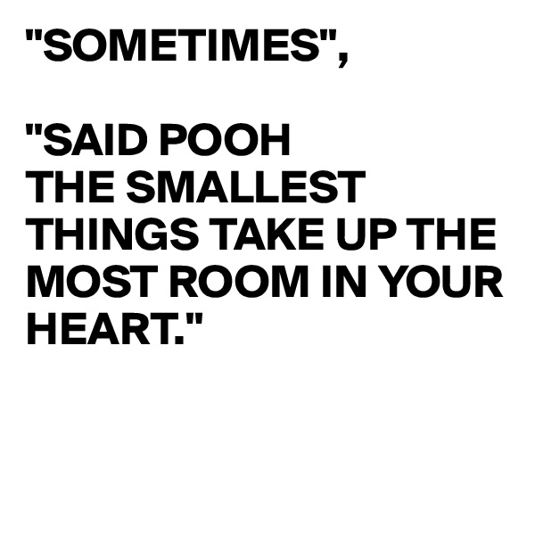 """SOMETIMES"",  ""SAID POOH THE SMALLEST THINGS TAKE UP THE MOST ROOM IN YOUR HEART."""