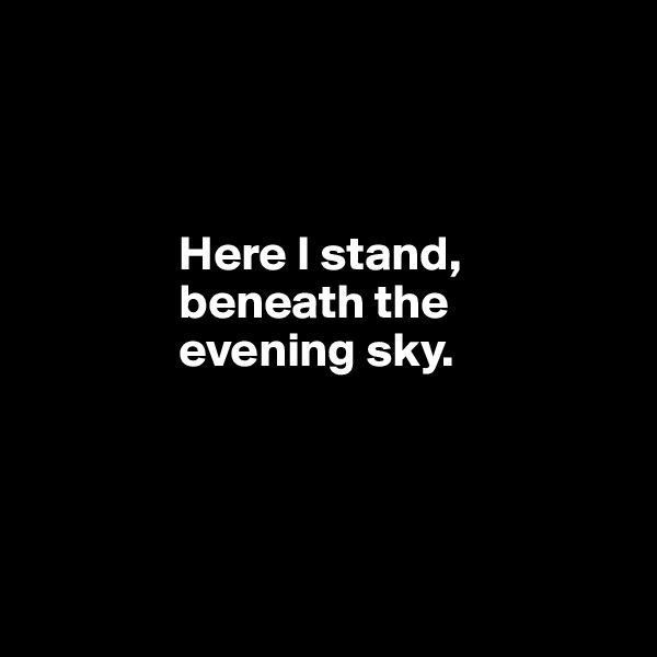 Here I stand,                 beneath the                 evening sky.